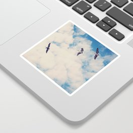 Flying Over Seas Sticker