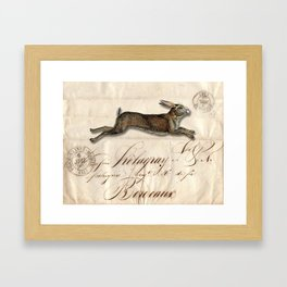 The French Rabbit Framed Art Print