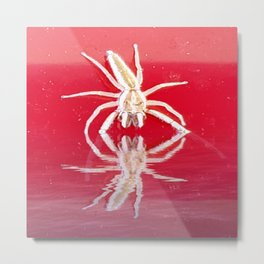 Down Came the Spider Metal Print