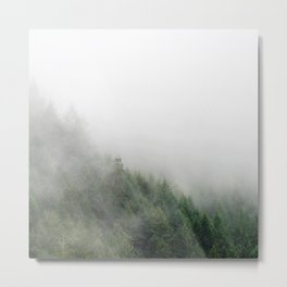 Foggy Oregon forest Metal Print