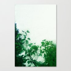 Spring Fresh Rain Canvas Print