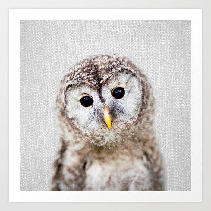 Baby Owl - Colorful Kunstdrucke