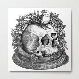 Sparrow, Skull, Snake Metal Print