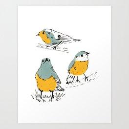 Old World Flycatcher Bird Art Print