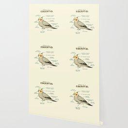 Anatomy of a Cockatiel Wallpaper