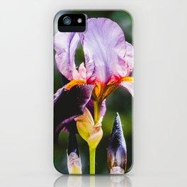 Finding Flowers III. Violet Iris Flower Photograph iPhone Case