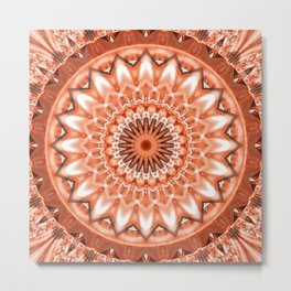 Mandala Earth attachment Metal Print