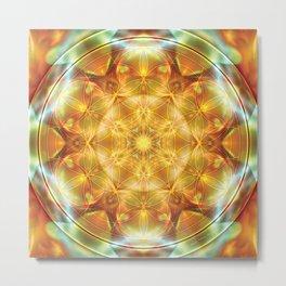 Flower of Life Mandalas 16 Metal Print