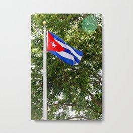 La Bandera Metal Print
