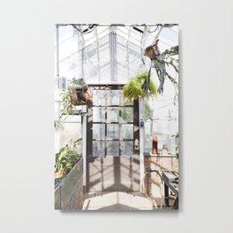 Greenhouse Fern Room Metal Print