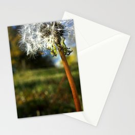 Life is Dandy Stationery Cards