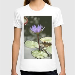 Beauty At The Pond T-shirt