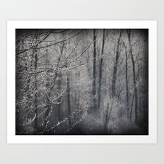 The Frosty Forest Art Print