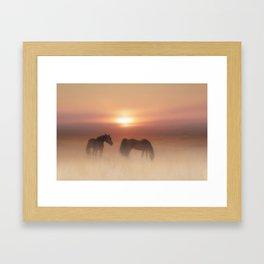 Horses in a misty dawn Framed Art Print