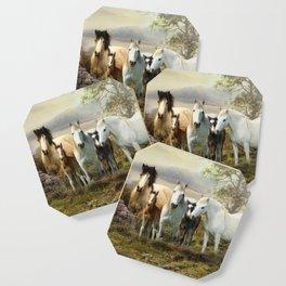 Connemara Ponies Coaster