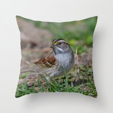 A White Throated Sparrow Throw Pillow