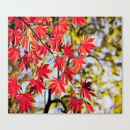 Red leaves in autumn Canvas Print