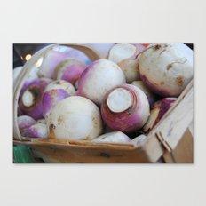 turnips? Canvas Print