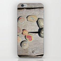 Rock Circle iPhone & iPod Skin