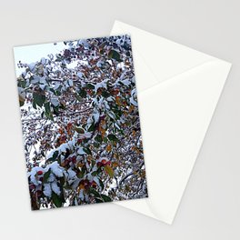 Snow on Fall Leaves Stationery Cards