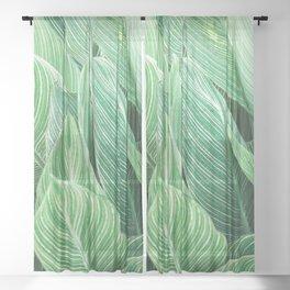 Tropical Leaves Sheer Curtain