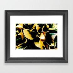 Plant Eleagnus Framed Art Print