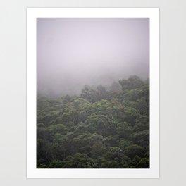 Trees like Broccoli Tasmania Art Print