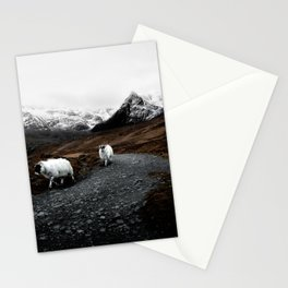 SHEEP - MOUNTAINS - SNOW - ROAD - PHOTOGRAPHY - FUNNY Stationery Cards
