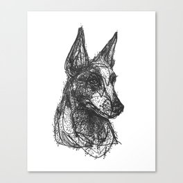 Cattle Dog Canvas Print