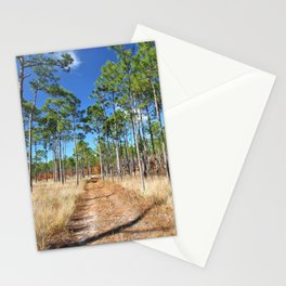 Dirt road through a pine forest Stationery Cards