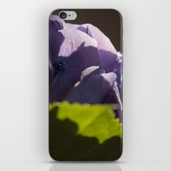 Whispers of happiness iPhone & iPod Skin