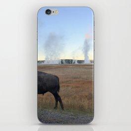 Bison Springs iPhone Skin