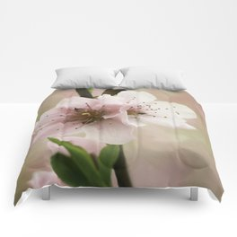 Pink Peach Blossoms Comforters