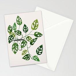 Monstera obliqua interior plant Stationery Cards