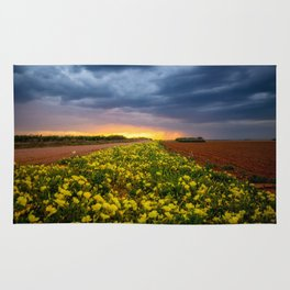 Yellow Flower Road - Path of Wildflowers Lead Into Texas Sunset on Stormy Evening Rug