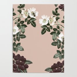 Bee Blackberry Bramble Coral Pink Poster