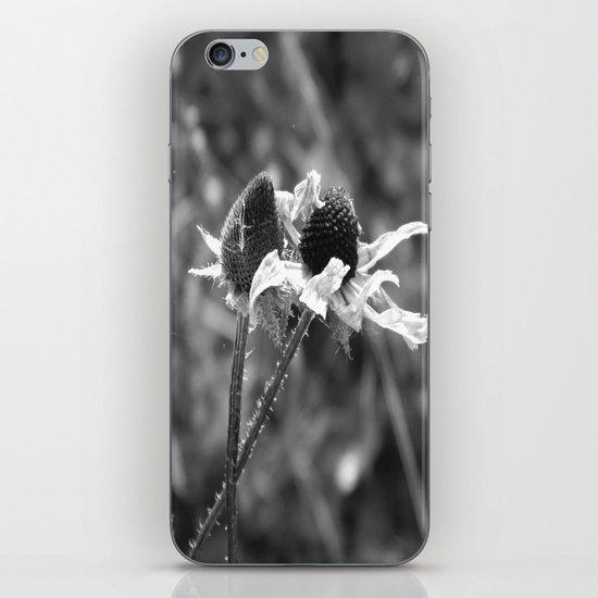 Stygian Stems iPhone & iPod Skin