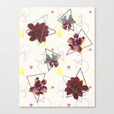 Spatial Succulents #redbubble #decor #buyart Canvas Print