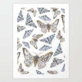 Peppered Moths Pattern Art Print