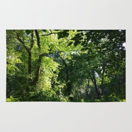 Forest Light and Shade Rug