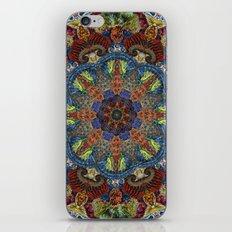 Hallucination Mandala 2 iPhone & iPod Skin