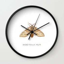 Banded Tussock Moth Wall Clock