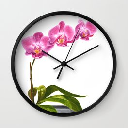 Watercolor Orchid Wall Clock