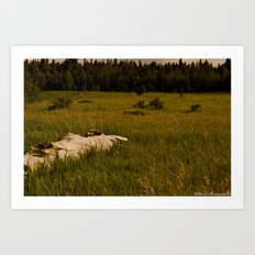 The Field Below Art Print