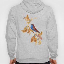 song bird Hoody