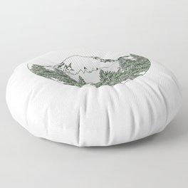 Mt. Rainier Floor Pillow