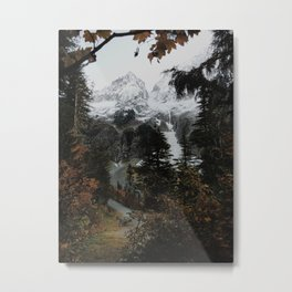 Cascade River Rd Metal Print