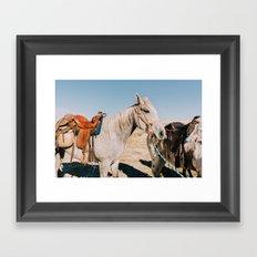 Desert Equestrian Framed Art Print