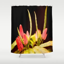 Exotic Colorful Flowers On A Black Background #decor #society6 Shower Curtain