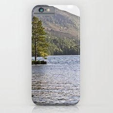 The Lonely Tree Slim Case iPhone 6s